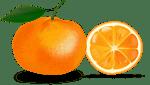 LunaGrown Jam Varieties 2