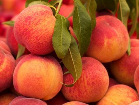 NY Peaches