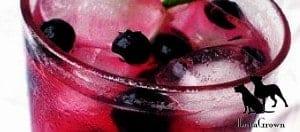 blueberry jam lemonade