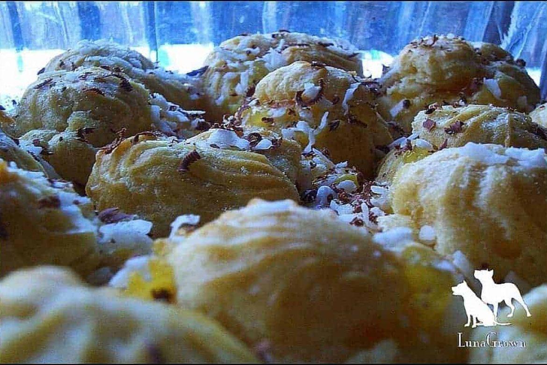 Jam Filled Cream Puffs
