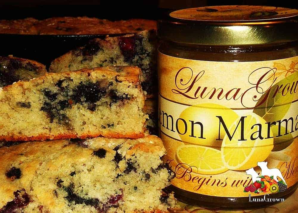 LunaGrown Blueberry Biscuits With Lemon Marmalade