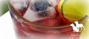 LunaGrown blueberry Lemonade