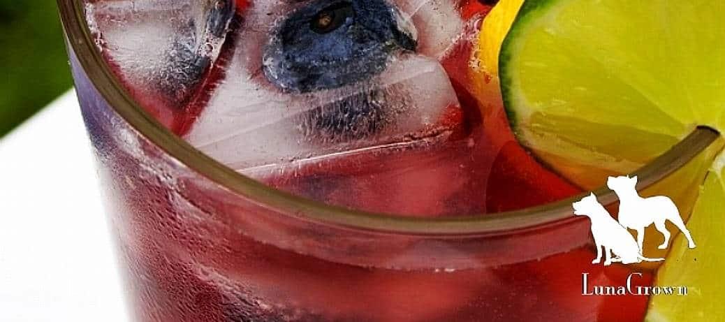 LunaGrown-Blueberry-Lemonade