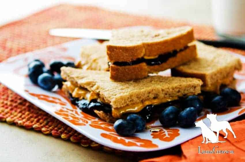LunaGrown Peanut Butter & Jam