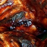 Apricot Glazed BBQ Chicken