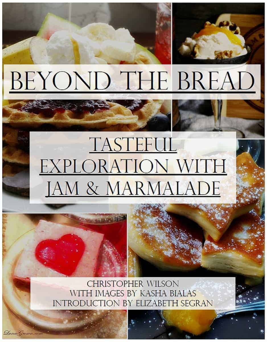 Beyond The Bread, Print Edition from LunaGrown 1