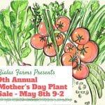bialas 900 plant sale