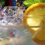 The Wonders of Lemon Lavender Marmalade