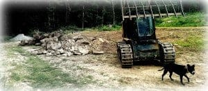 luna skid steer