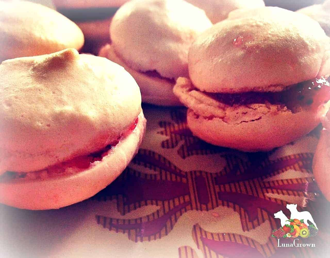 Macaroons with LunaGrown Jam from Cambridge Massachusetts