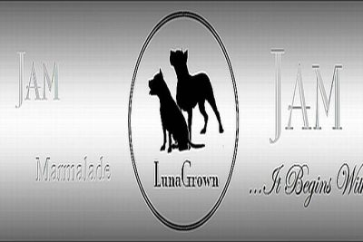 For Immediate Release-LunaGrown Jams the Internet with Tradition