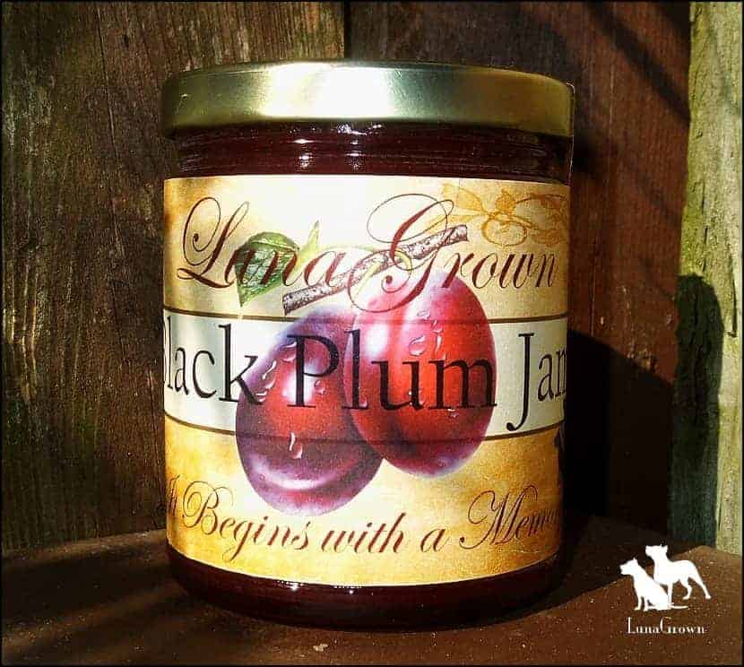 LunaGrown Black Plum