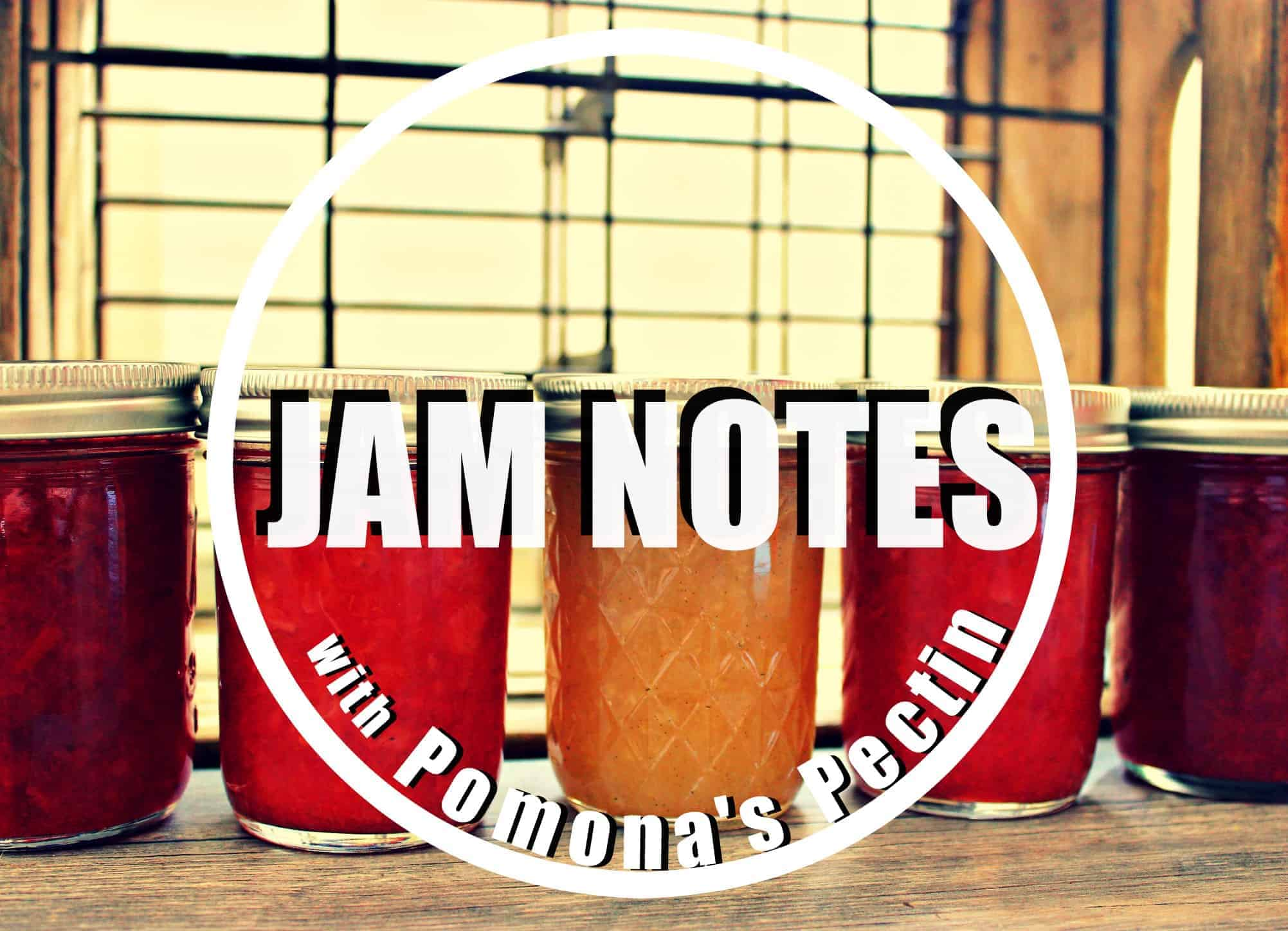 Jam Notes from Pamona's Pectin - Beyond the Bread