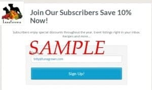 subscribe form coupon