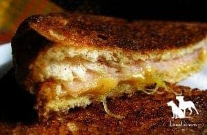 Turkey & Pineapple Jam Sandwich